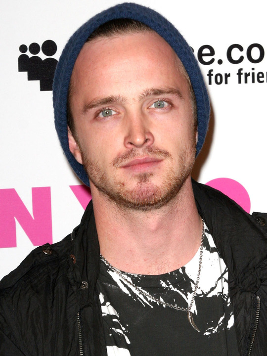 Aaron Paul Height and Weight Measurements